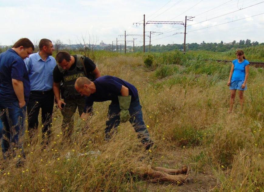 В Мариуполе женщина, искавшая металлолом, погибла под завалами грунта, фото-2