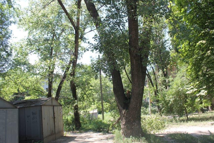 Общение с коммунальщиками: на проводах «Днепроблэнерго» висит дерево «Теплоцентрали» (ФОТО), фото-10