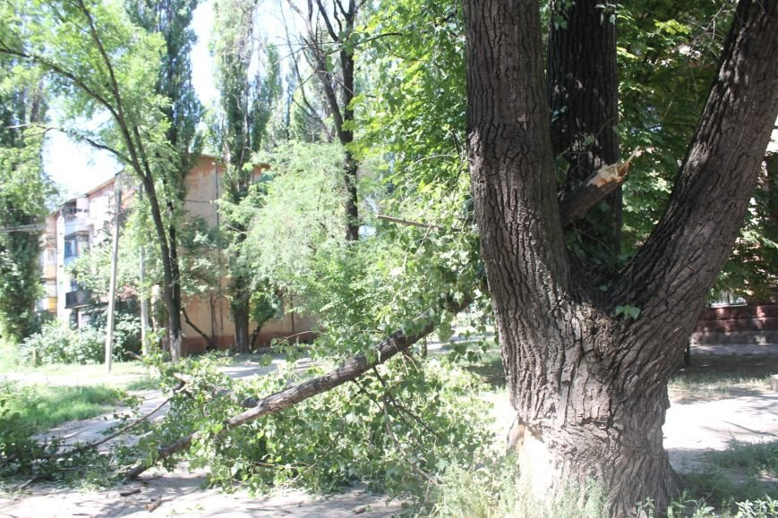 Общение с коммунальщиками: на проводах «Днепроблэнерго» висит дерево «Теплоцентрали» (ФОТО), фото-8