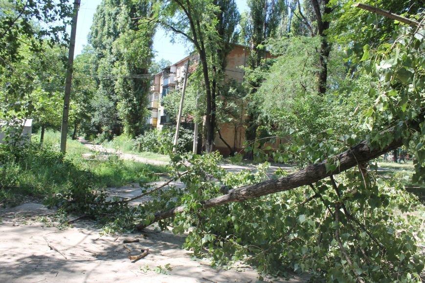 Общение с коммунальщиками: на проводах «Днепроблэнерго» висит дерево «Теплоцентрали» (ФОТО), фото-7