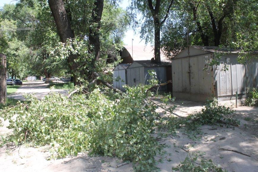 Общение с коммунальщиками: на проводах «Днепроблэнерго» висит дерево «Теплоцентрали» (ФОТО), фото-3