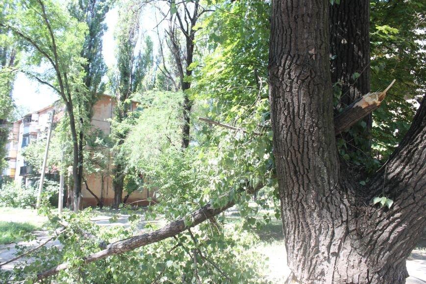 Общение с коммунальщиками: на проводах «Днепроблэнерго» висит дерево «Теплоцентрали» (ФОТО), фото-6