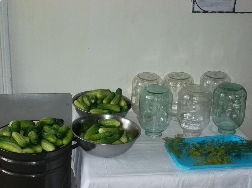 В установах виконання покарань області розпочато збір овочів (ФОТО) (фото) - фото 3