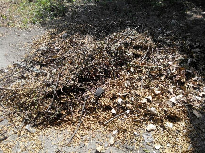 Коммунальщикам на заметку: заросли амброзии, ужасающая лавочка на проспекте и другие жалобы запорожцев (фото) - фото 10