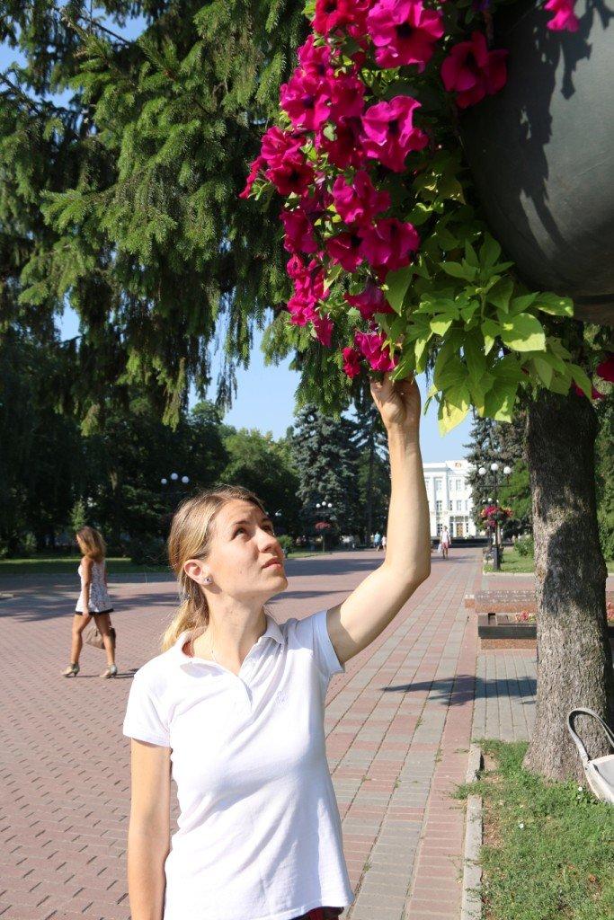 Кто делает красивые клумбы в Чернигове?, фото-2