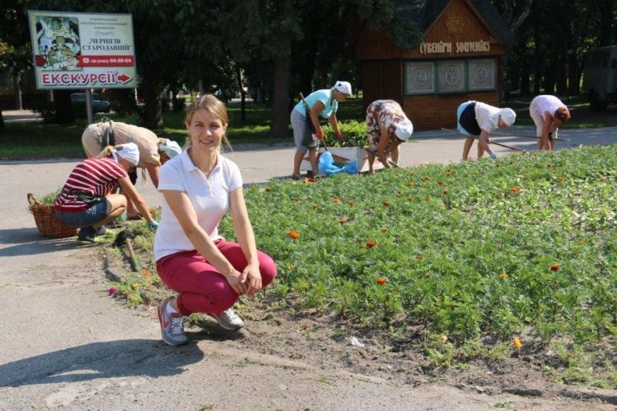 Кто делает красивые клумбы в Чернигове?, фото-3