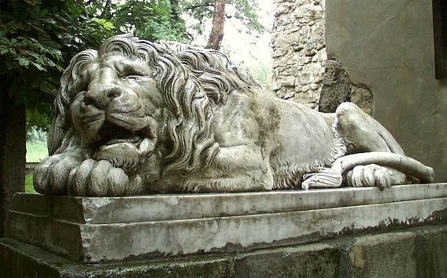 Скільки левів у Львові? (ФОТО) (фото) - фото 1