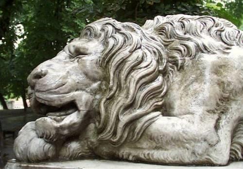 Скільки левів у Львові? (ФОТО) (фото) - фото 3