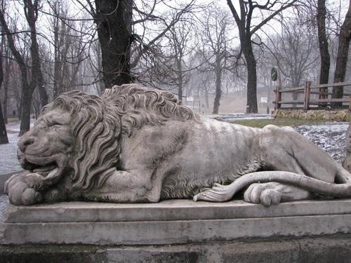 Скільки левів у Львові? (ФОТО) (фото) - фото 5