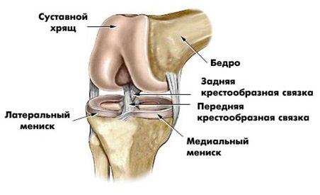 Особо опасен: куда обращаться в Днепропетровске с травмой колена (фото) - фото 1