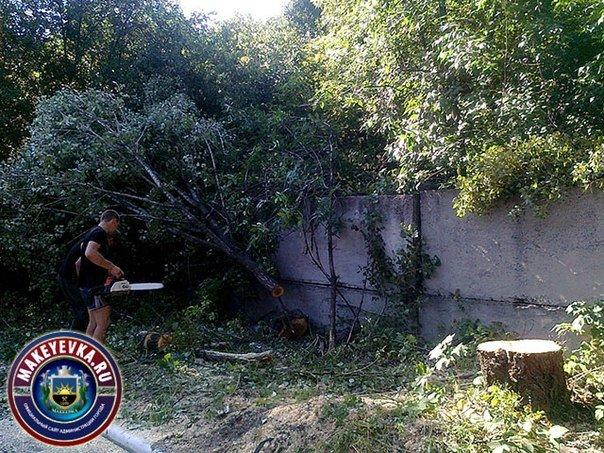 В Макеевке ликвидируют стихийные свалки и убирают аварийные деревья (фото) - фото 1