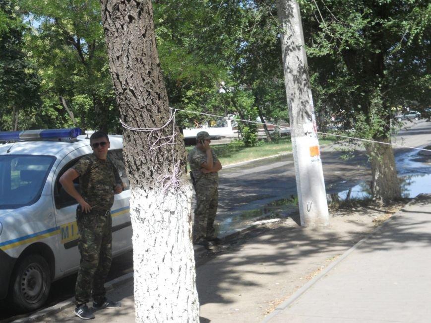 Мариуполец устроил одиночный пикет против сломанной ветки (ФОТО), фото-2