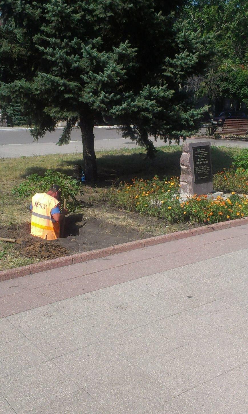 В Красноармейске на месте будущего памятника Шевченко образовалась яма (фото) - фото 2