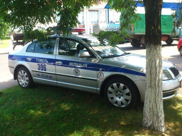Гомельчанин сфотографировал парковку автомобиля ГАИ на газоне и вызвал нешуточную дискуссию (фото) - фото 2