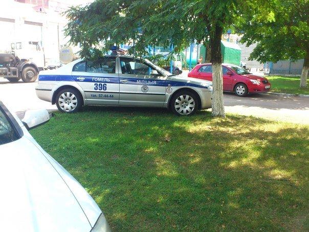 Гомельчанин сфотографировал парковку автомобиля ГАИ на газоне и вызвал нешуточную дискуссию (фото) - фото 1