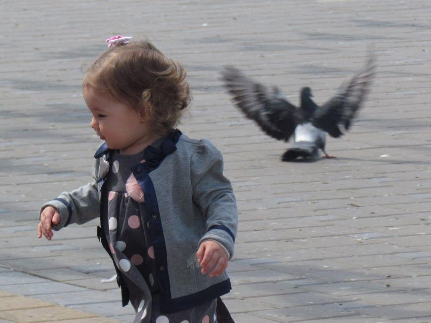 Фотопятница: «Крылатый Мариуполь», фото-22