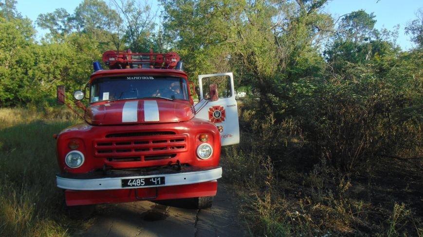 Мариуполь охватила эпидемия пожаров в зеленой зоне. Огонь подобрался к детскому санаторию (ФОТОФАКТ) (фото) - фото 1