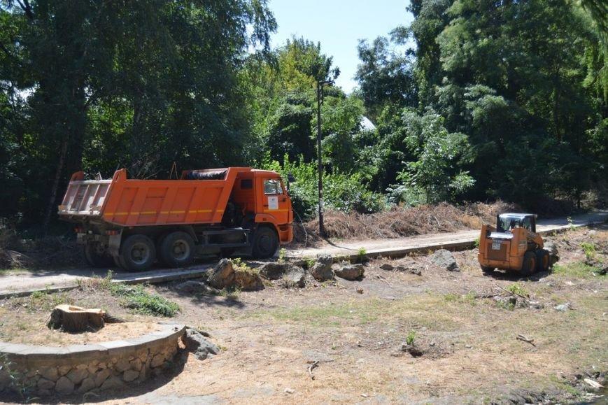 Бахарев: Спиленные на набережной Салгира деревья представляли угрозу для безопасности симферопольцев (ФОТО) (фото) - фото 2