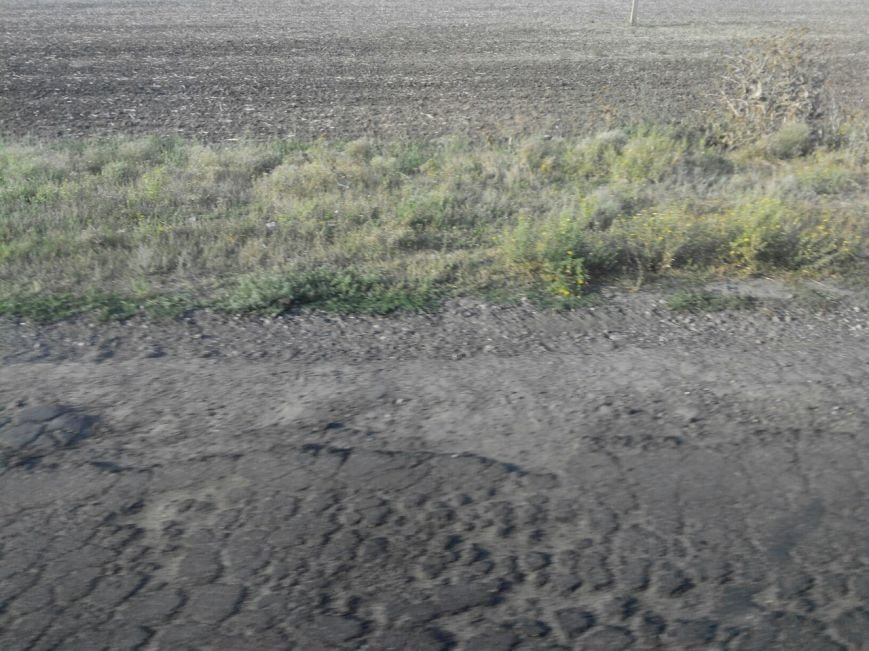 Николаевская «Ольвия»: дорога на «заповедные земли» превратилась в испытание (фото) - фото 1