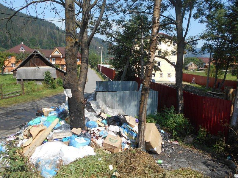Карпатські села засипають сміттям (фото) - фото 4