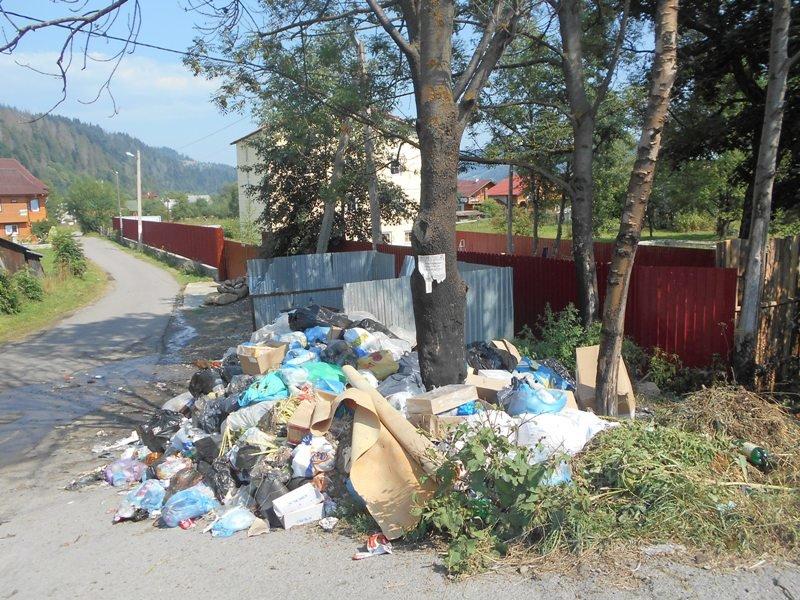 Карпатські села засипають сміттям (фото) - фото 3