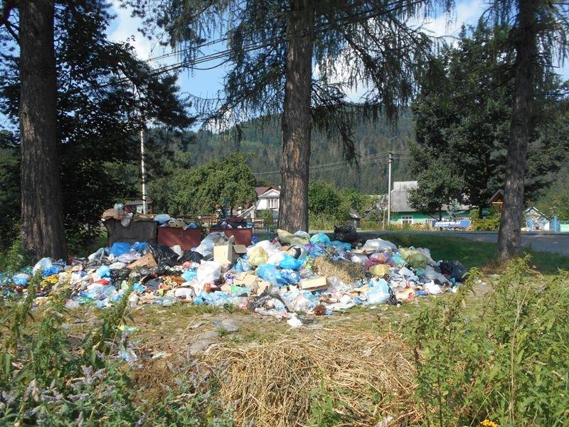 Карпатські села засипають сміттям (фото) - фото 1