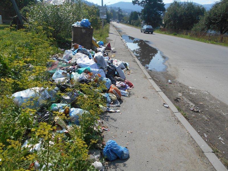 Карпатські села засипають сміттям (фото) - фото 5