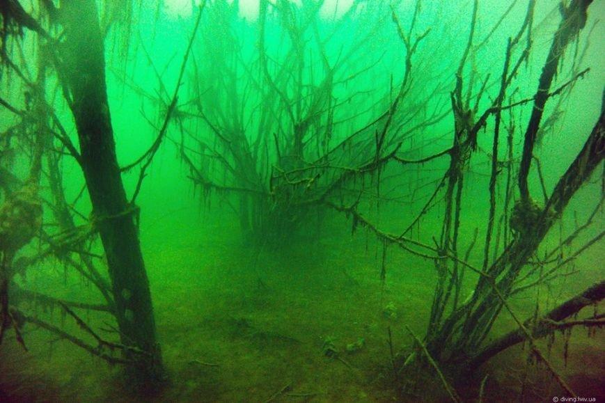 На дні озера Задорожнє дайвери знайшли транспорт часів Другої світової війни (ФОТО) (фото) - фото 6
