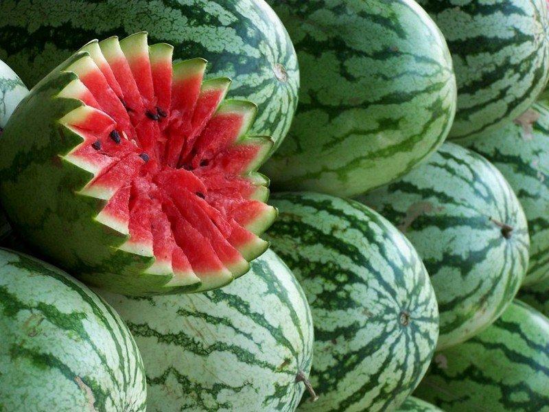 watermelon04 (2)