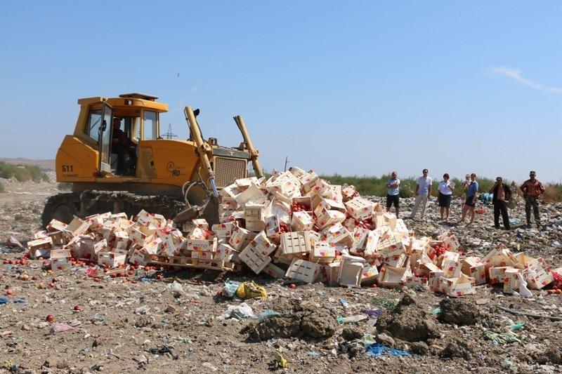 На городской свалке Керчи трактором раздавили более 4 тонн фруктов из Литвы (ФОТО) (фото) - фото 5