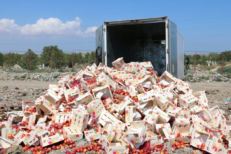 На городской свалке Керчи трактором раздавили более 4 тонн фруктов из Литвы (ФОТО) (фото) - фото 3