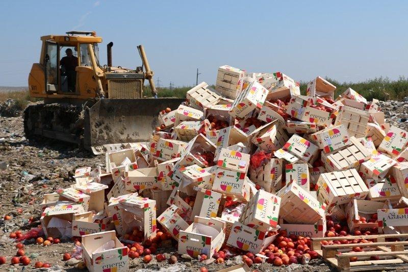 На городской свалке Керчи трактором раздавили более 4 тонн фруктов из Литвы (ФОТО) (фото) - фото 4