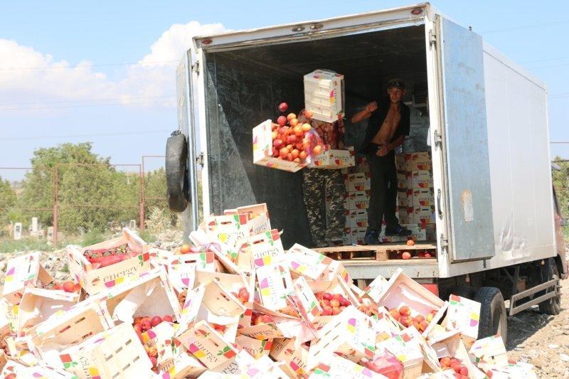 На городской свалке Керчи трактором раздавили более 4 тонн фруктов из Литвы (ФОТО) (фото) - фото 2