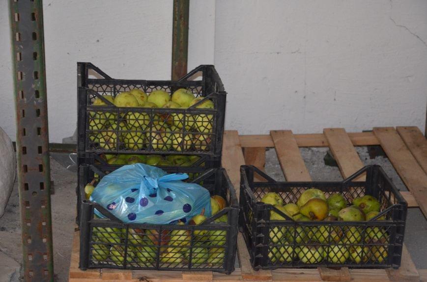 В Мариуполе открыли волонтерский логистический центр (ФОТО+ВИДЕО), фото-7