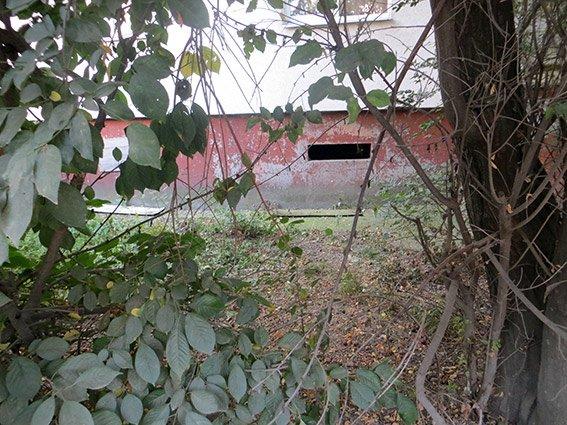В Івано-Франківську знайдено пакет з тілом немовляти (ФОТО) (фото) - фото 1