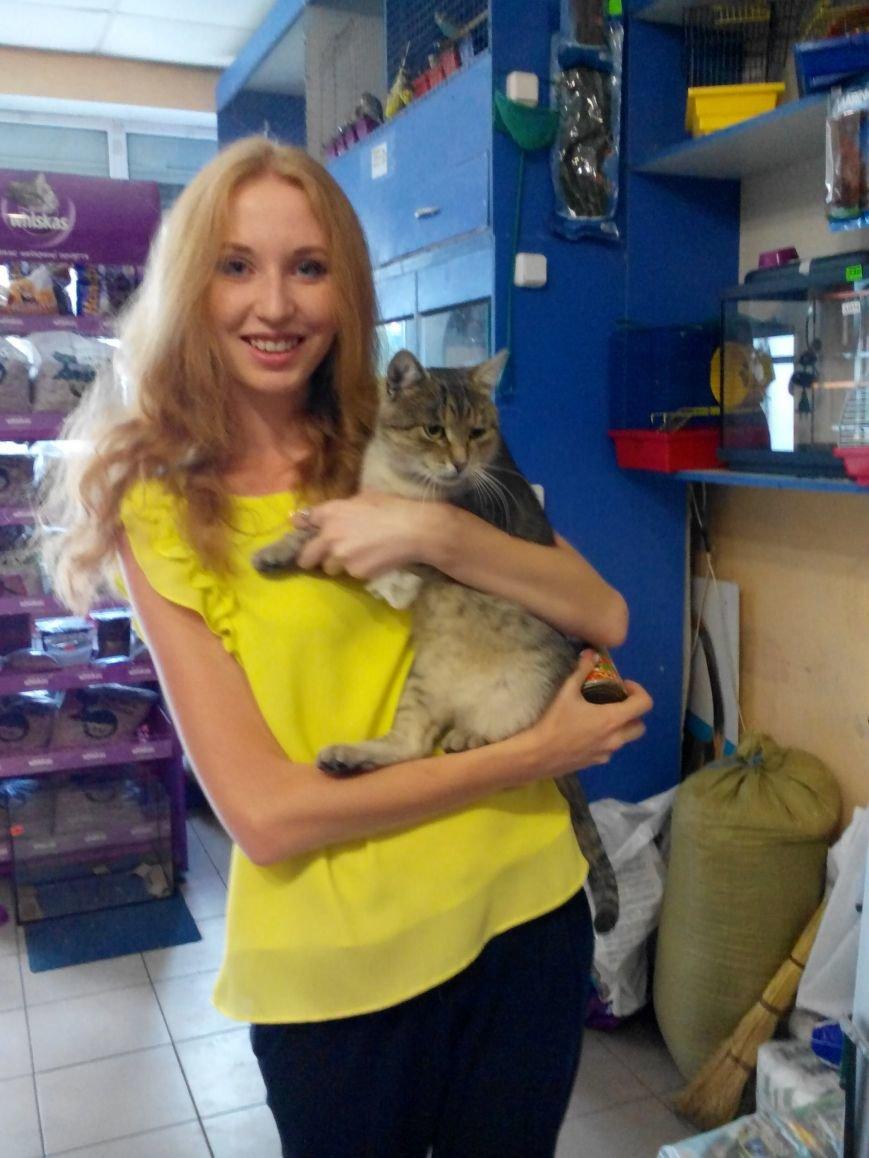 Фотоотчет: Победительница конкурса «Мой котЭ» получила приз, фото-2