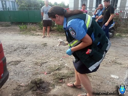 В Сартане милиция усилила патруль, чтобы пресечь факты мародерства (ФОТО), фото-1