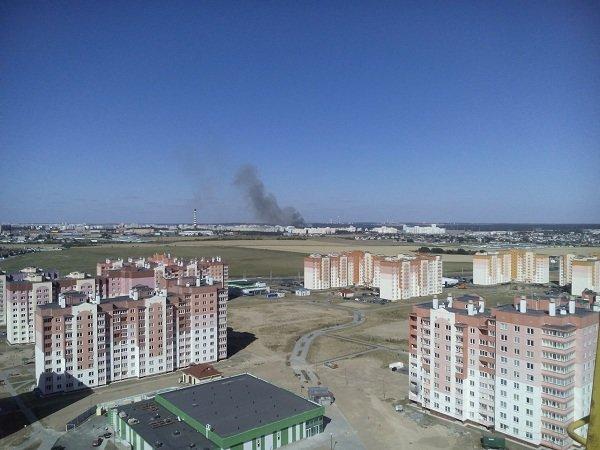 На Вишневце произошел пожар поля: под угрозой оказался лес и 4-ая больница (фото) - фото 2