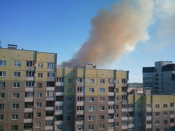 На Вишневце произошел пожар поля: под угрозой оказался лес и 4-ая больница (фото) - фото 3