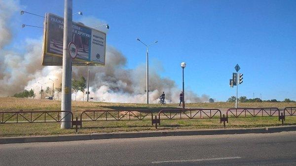 На Вишневце произошел пожар поля: под угрозой оказался лес и 4-ая больница (фото) - фото 5