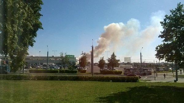 На Вишневце произошел пожар поля: под угрозой оказался лес и 4-ая больница (фото) - фото 7
