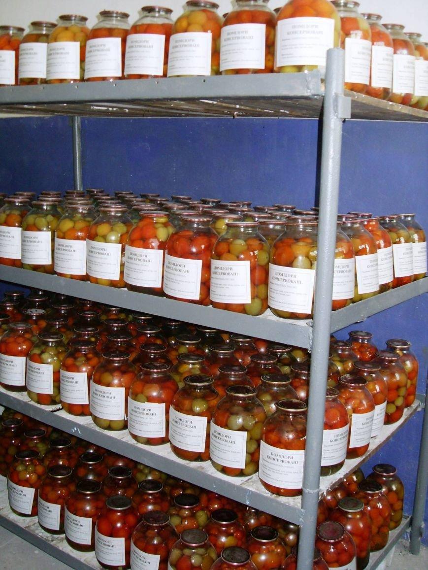 Днепропетровские осужденные заготовили 70 тонн солений (фото) - фото 2