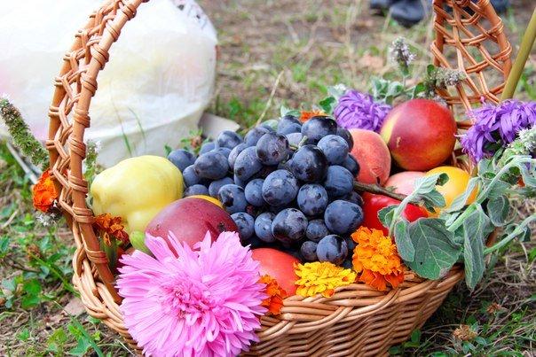 У чернівецьких храмах сьогодні освятили яблука, груші та мед (фото) - фото 3