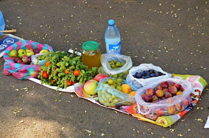 В Николаеве отмечают Яблочный Спас (ФОТОРЕПОРТАЖ), фото-11