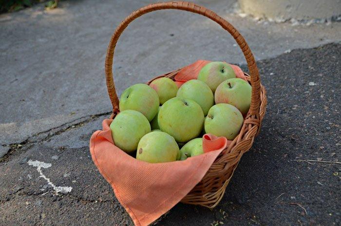 В Николаеве отмечают Яблочный Спас (ФОТОРЕПОРТАЖ), фото-9