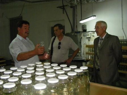 Губернатор Буковини відвідав Глибоку (фото) - фото 1
