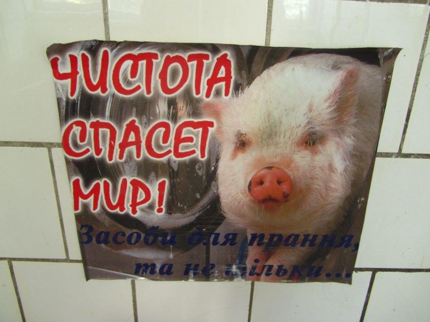 Ревизор по-днепропетровски: студенческий рай, или что таят общежития Медицинской академии?, фото-8
