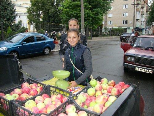 Липовый, гречишный, подсолнечный, акациевый, цветочный: в Павлограде состоялась медовая ярмарка (фото) - фото 4