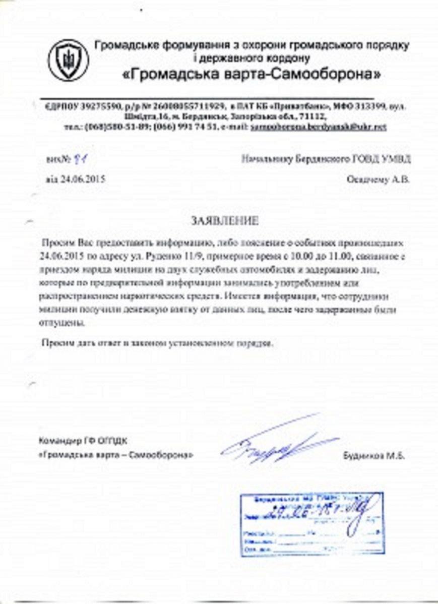 Громадська Варта Самооборона: результаты работы общественной организации Бердянска (фото) - фото 1