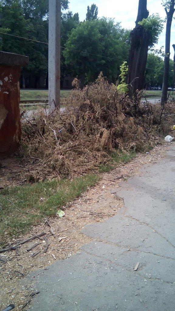 Накануне государственного праздника Криворожане сетуют на неудобства и опасности улиц Кривого Рога (фото) - фото 1